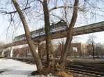 Trees & Train