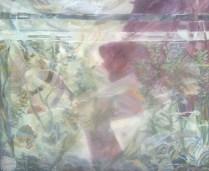 An aquarium, 1985