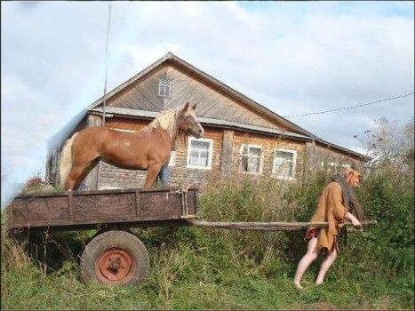Horse_reversal