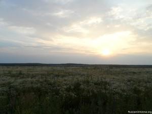 Field near Moscow
